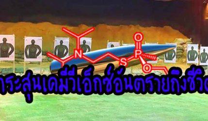 กระสุน เคมีวีเอ็กซ์อันตรายถึงชีวิต