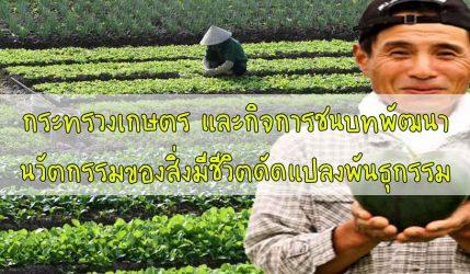 กระทรวงเกษตร และกิจการชนบทพัฒนานวัตกรรมของสิ่งมีชีวิตดัดแปลงพันธุกรรม