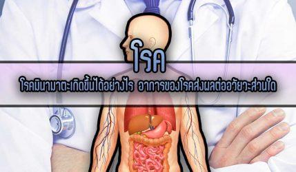โรค มินามาตะเกิดขึ้นได้อย่างไร อาการของโรคส่งผลต่ออวัยวะส่วนใด